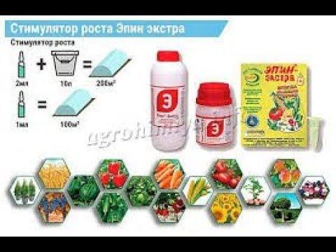 Эффективность удобрения - ГУМАТ + ЭПИН.   Fertilizer Efficiency - GUMAT + EPIN.