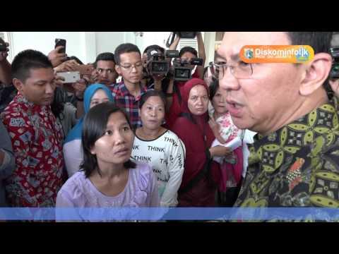 20 Apr 2017 Gub Basuki T. Purnama Menerima Pengaduan Warga
