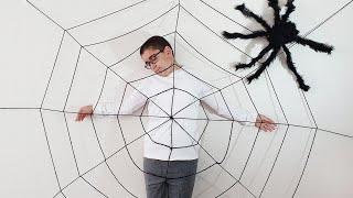 Buğrayı Siyah Örümcek Yakaladı Berat Kurtardı. Eğlenceli Çocuk Videosu