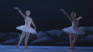 My First Ballet: Swan Lake – long swan excerpt | English National Ballet