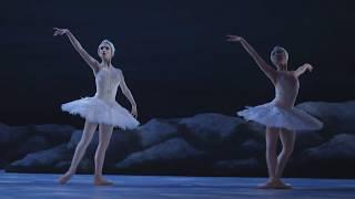 My First Ballet: Swan Lake – long swan excerpt | English National Ballet