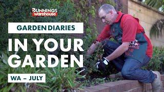 Gardening in July | WA | Bunnings Garden Diary