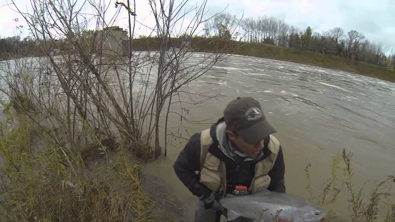 Fly fishing for steelhead on a lake huron tributary youtube for Lake huron fishing report