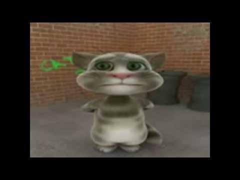 Mèo Hát Cải Lương Lan Và Điệp