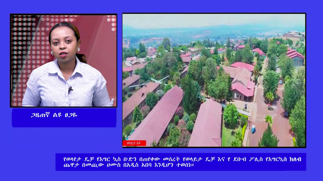 ESAT Interview Liyu with Resident of Wolaita Sodo April 2019