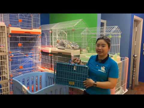 Giới thiệu hàng rào, quây nhựa, chuồng gỗ sắt cho chó mèo | Pet Mart