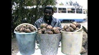 Африканец на Урале картошку продаёт
