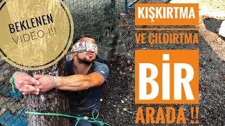 KIŞKIRTMA VE ÇILDIRTMA BİR ARADA !! (Beklenen video/Emirin intikamı)