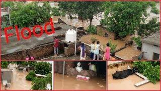 Flood in Punjab   INDIA   2019