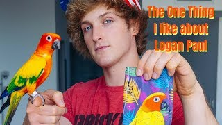 The One Thing I Like About Logan Paul