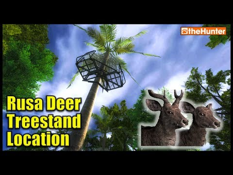 Rusa Deer Treestand Location (works great!) - theHunter Hunting Game