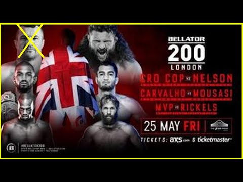 Mirko Cro Cop Out of Bellator 200 Main Event Against Roy Nelson