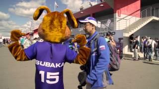 Субафест 2015 в Москве (Subafest 2015 in Moscow)