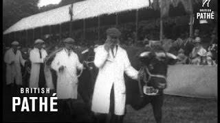 Duke Of Gloucester At Norfolk Show (1920-1929)