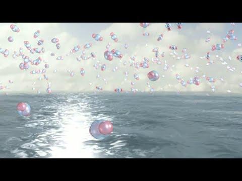 اتساع ظاهرة -تحمض المحيطات-!  - نشر قبل 3 ساعة