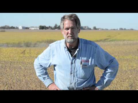 Iowa Soybean Review - Merlin Miller