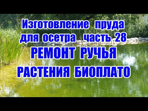 Изготовление пруда для осетра (часть 28) Растения биоплато