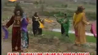 Pashto attan Qandi Kochi
