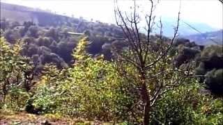 GITES DE FRANCE  HAUTES PYRENEES  LABASSERE 160811