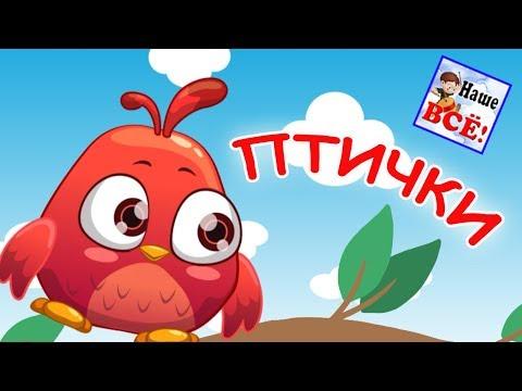видео: Маленькие птички. Мульт-песенка, видео для детей. Наше всё!