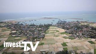 Đất nông nghiệp ở Lý Sơn tạo sóng giả gấp 20-30 lần