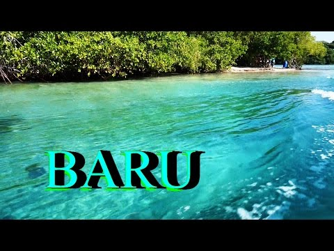 COLOMBIA isla Barú Playa Blanca...between Mangroves and White Sand Caribbean beach