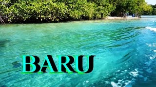 Video COLOMBIA isla Barú Playa Blanca...between Mangroves and White Sand Caribbean beach download MP3, 3GP, MP4, WEBM, AVI, FLV Agustus 2017