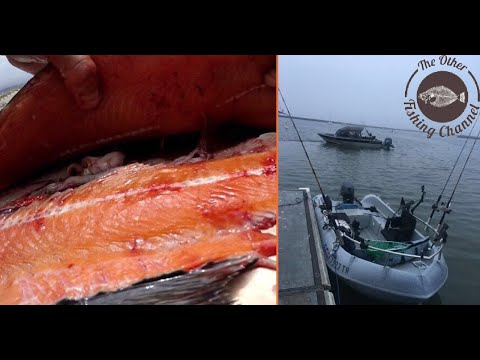 SALMON fishing in the BIGGEST little boat on the ocean (Catch, Clean and Cook)