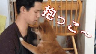 イヌ好きのイヌ好きによるイヌ好きのための傑作GIF動画まとめです! ほ...