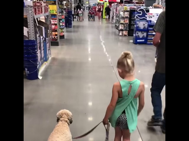 6 year old Sophia proofing Willie in Lowe's Home Improvement