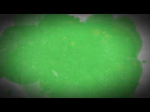 Template Intro Army Force with Green Screen #Effects #Films #TOP from YouTube · Duration:  2 minutes 46 seconds
