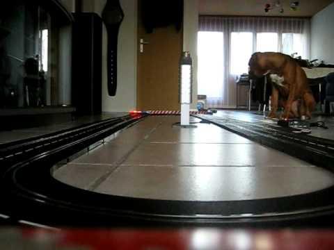 Nava and the Carrera Slot Race Track