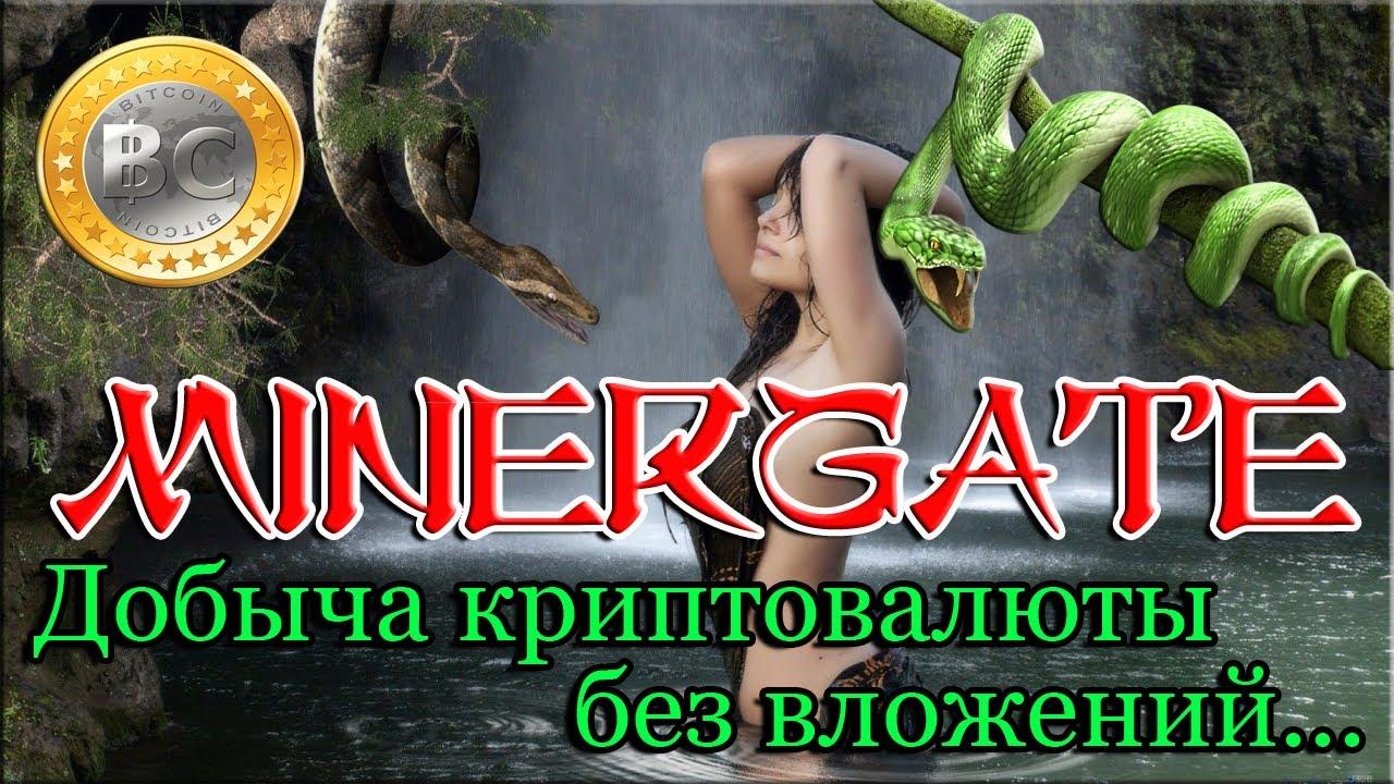 Мinergate - Заработок криптовалюты без вложений при помощи компьютера.