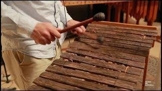 Sones de Marimba - Patacoblue