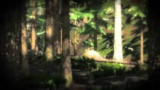 The Hunter Pc Gameplay 12 HD