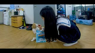 [vr verevere] vere with jia(베레…