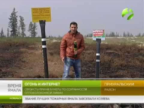 Огонь и интернет. Связисты приняли меры по сохранности оптоволоконной линии