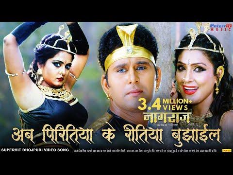 अब पिरितिया के रीतिया बुझाईल   Naagraaj नागराज   Super Hit Bhojpuri Film Song   Payas Pandit