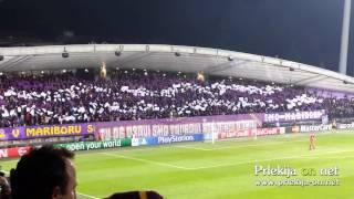 Video Gol Pertandingan Schalke 04 vs Maribor
