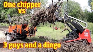 Echo Bearcat Woodchipper vs 3 guys and a Toro Dingo