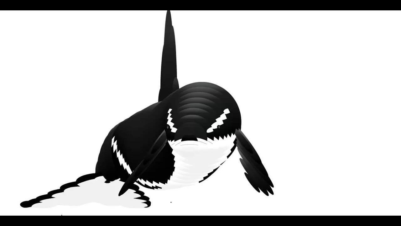 mouse following whale youtube