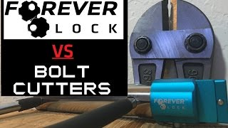 [51] Forever Lock VS Bolt Cutters (Viewer Request)