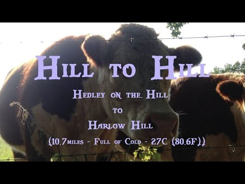 Hill to Hill: Hedley-on-the-Hill to Harlow Hill (13th September 2016)