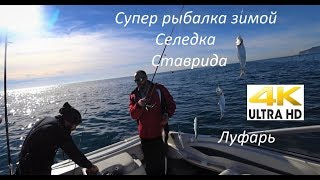 Рыбалка в черном море с лодки  Ловля ставриды, селедки и луфаря на самодур. Часть 1.  4К видео