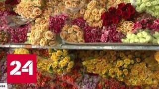 видео Купить букет цветов на 1 сентября, на день учителя