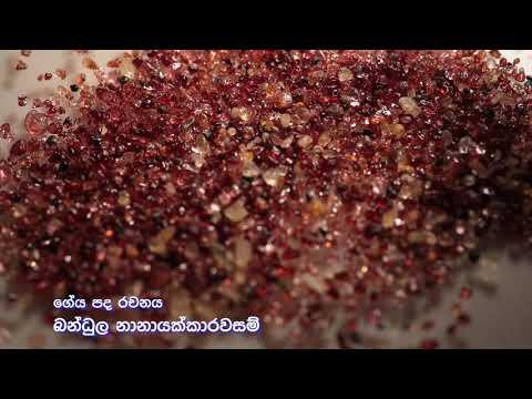 GEOLOGICAL SURVEY AND MINES BUREAU-THEME SONG
