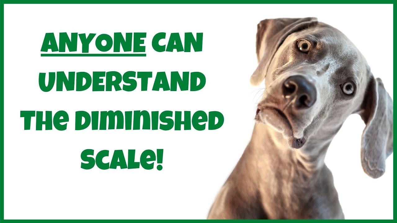 The Diminished Scale 101