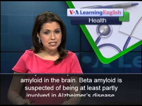 Insufficient of the Can lead to Loss Of Memory, Study States