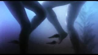 «Пираньи 3DD»: дублированный трейлер