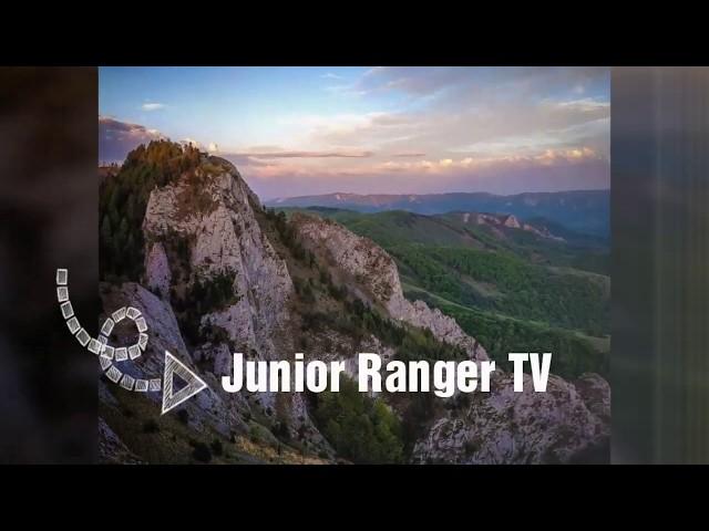 TV@JUNIORRANGER.RO